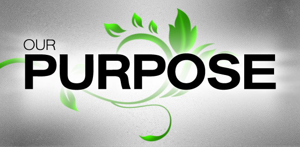 our_purpose